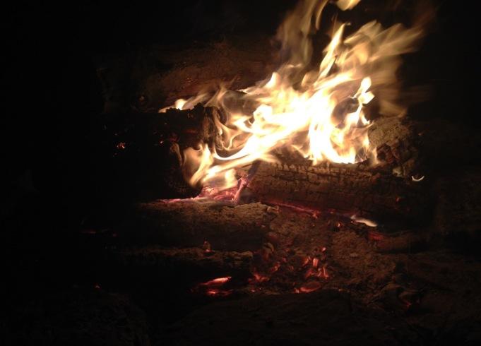 the wild child camp fire
