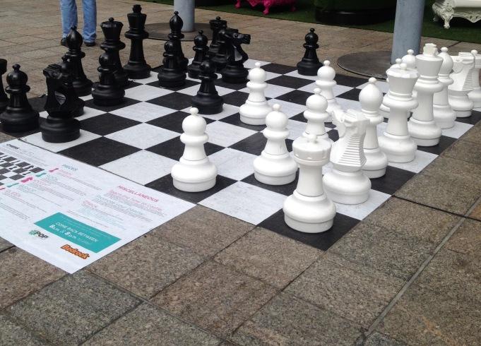 the wild child chess park