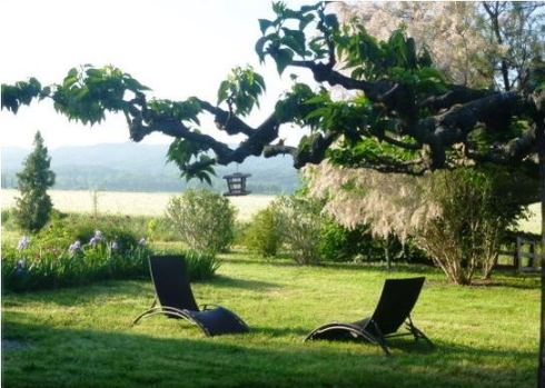 Avignon rental apartment #France  | www.the-wild-child.com