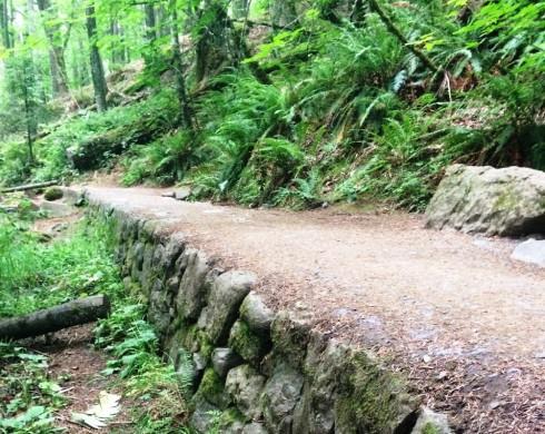 Hiking Trail #Oregon  | www.the-wild-child.com