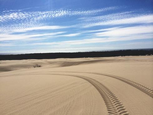#Oregon Sand Dunes | www.the-wild-child.com