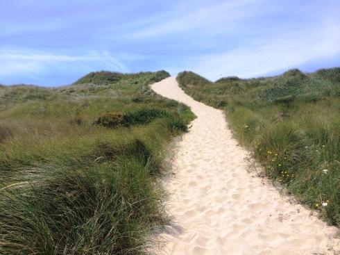 Sandy Path | www.the-wild-child.com